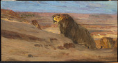 view Lions in the Desert digital asset number 1