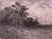 view Landscape, Woodland Scene digital asset number 1