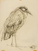 view Heron digital asset number 1