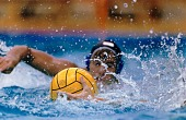 view Kevin Robertson, Water Polo, Pan-American Games, Caracas, Venezuela, from the series Shooting for the Gold digital asset number 1
