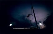 view Jeff Buckingham, Pole Vaulter, Pan-American Games, Caracas, Venezuela, from the series Shooting for the Gold digital asset number 1