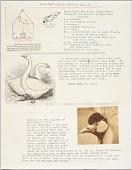 view Goop Joe's Weekly Poultry Page #7. digital asset number 1