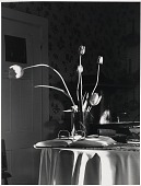 view Tulips on Table, Bath, Maine digital asset number 1