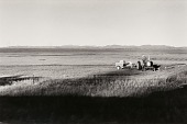 view Autolandscape, Colorado digital asset number 1