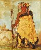 view La-wée-re-coo-re-shaw-wee, War Chief, a Republican Pawnee digital asset number 1