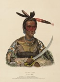 view TO-KA-CON. A SIOUX CHIEF., from History of the Indian Tribes of North America digital asset number 1