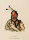 view ESH-TA-HUM-LEAH. A SIOUX CHIEF, from History of the Indian Tribes of North America digital asset number 1