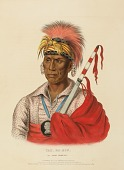 view TEH-RO-HON, AN IOWAY WARRIOR., from History of the Indian Tribes of North America digital asset number 1