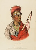 view NOT-CHI-MI-NE. AN IOWAY CHIEF., from History of the Indian Tribes of North America digital asset number 1