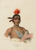 view MOA-NA-HON-GA. GREAT WALKER. AN IOWAY CHIEF., from History of the Indian Tribes of North America digital asset number 1
