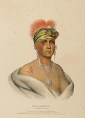 view MON-CHONSIA. A KANSAS CHIEF., from History of the Indian Tribes of North America digital asset number 1