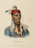 view SHIN-GA-BA-W'OSSIN. A CHIPPEWAY CHIEF., from History of the Indian Tribes of North America digital asset number 1