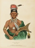 view AP-PA-NOO-SE. SAUKIE CHIEF, from History of the Indian Tribes of North America digital asset number 1