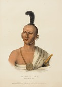 view KAI-POL-E-QUAH, WHITE NOSED FOX, from History of the Indian Tribes of North America digital asset number 1
