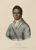 view DAVID VANN. A CHEROKEE CHIEF., from History of the Indian Tribes of North America digital asset number 1