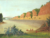 view South Side of Buffalo Island, Showing Buffalo Berries in the Foreground digital asset number 1