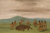 view Medicine Buffalo of the Sioux digital asset number 1