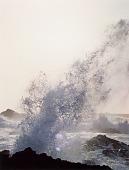 view Surf, Sea Lion Rocks, Point Lobos, California digital asset number 1