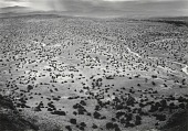 view Pojaque Plains, from Black Mesa, San Ildefonso, New Mexico digital asset number 1