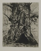 view Untitled--Tree Trunk digital asset number 1