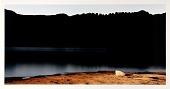 view Hite Crossing, Lake Powell, Utah digital asset number 1