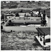 view Back Yards, Diamond Bar, CA, from the Los Angeles Documentary Project digital asset number 1