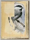 view Mathematics and Music (chickadee on tree branch) digital asset number 1