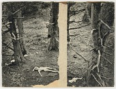 view Untitled (nude on blanket on forest floor) digital asset number 1