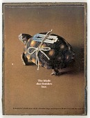 view Untitled (turtle with double-edged razor) digital asset number 1