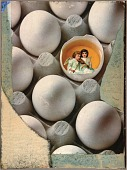 view Untitled (eggs in carton) digital asset number 1