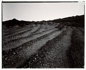view Pre-historic Maze, Colorado River, California digital asset number 1