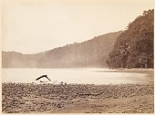 view Tropical Scenery: The Terminus of the Proposed Canal, Limon Bay (Darien Expedition) digital asset number 1