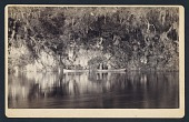 view [Under the Bluffs of the Withlacoochee River, Florida] digital asset number 1