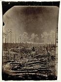 view [Wilderness Battlefield] digital asset number 1