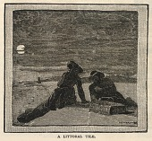 view A Littoral Tile, from Scribner's Monthly, An Illustrated Magazine for the People, January 1879 digital asset number 1