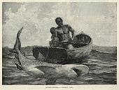 view A Peddler, A Nassau Gateway, Shark-Fishing--Nassau Bar, from The Century Magazine, February 1887 digital asset number 1