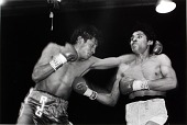 view Two unidentified boxers sparring in ring digital asset number 1