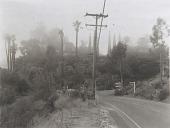 view Saddle Peak Road - Topanga (LA1) digital asset number 1