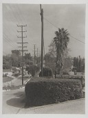 view Charnock Road (Inglewood Blvd.), Mar Vista (LA13) digital asset number 1