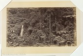 view Falls of the Oroyo Delia--Las Nubes, Guatemala digital asset number 1