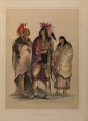 view North American Indian Portfolio digital asset number 1