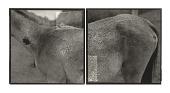 view Wet Horse, West Virginia digital asset number 1