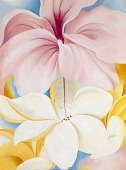 view Hibiscus with Plumeria digital asset number 1