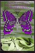 view Iron Butterfly (Iron Butterfly, Velvet Underground...Avalon Ballroom, San Francisco, California 6/7/68-6/9/68) digital asset number 1