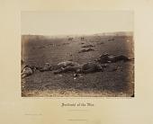 view Incidents of the War: A Harvest of Death digital asset number 1