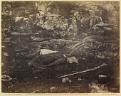 view Incidents of the War: A Sharpshooter's Last Sleep digital asset number 1
