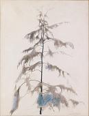 view Pine Tree digital asset number 1