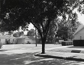 view Heat and Shade - 3200 Block of Milby Avenue, Wichita Falls, Texas, 1980 digital asset number 1