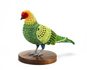 view Biodiversity Reclamation Suit: Carolina Parakeet digital asset number 1