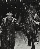 view An incident in the snowstorm. Rag peddler Sam Karshnowitz leads a horse along the street in a bitter snowstorm. The horse has been rented for the day to pull his wagon. digital asset number 1